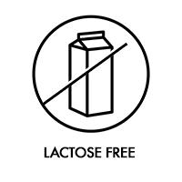 sans lactose UK