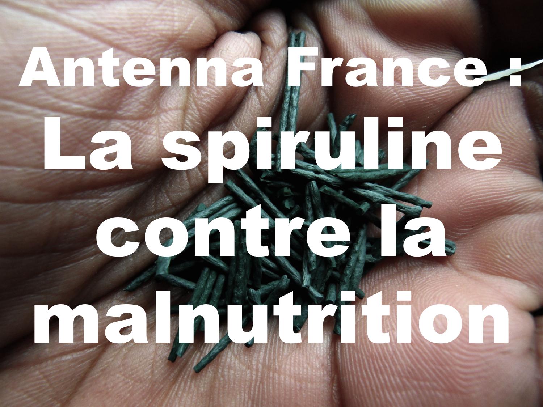 spiruline spirulina cuillère plante malnutrition