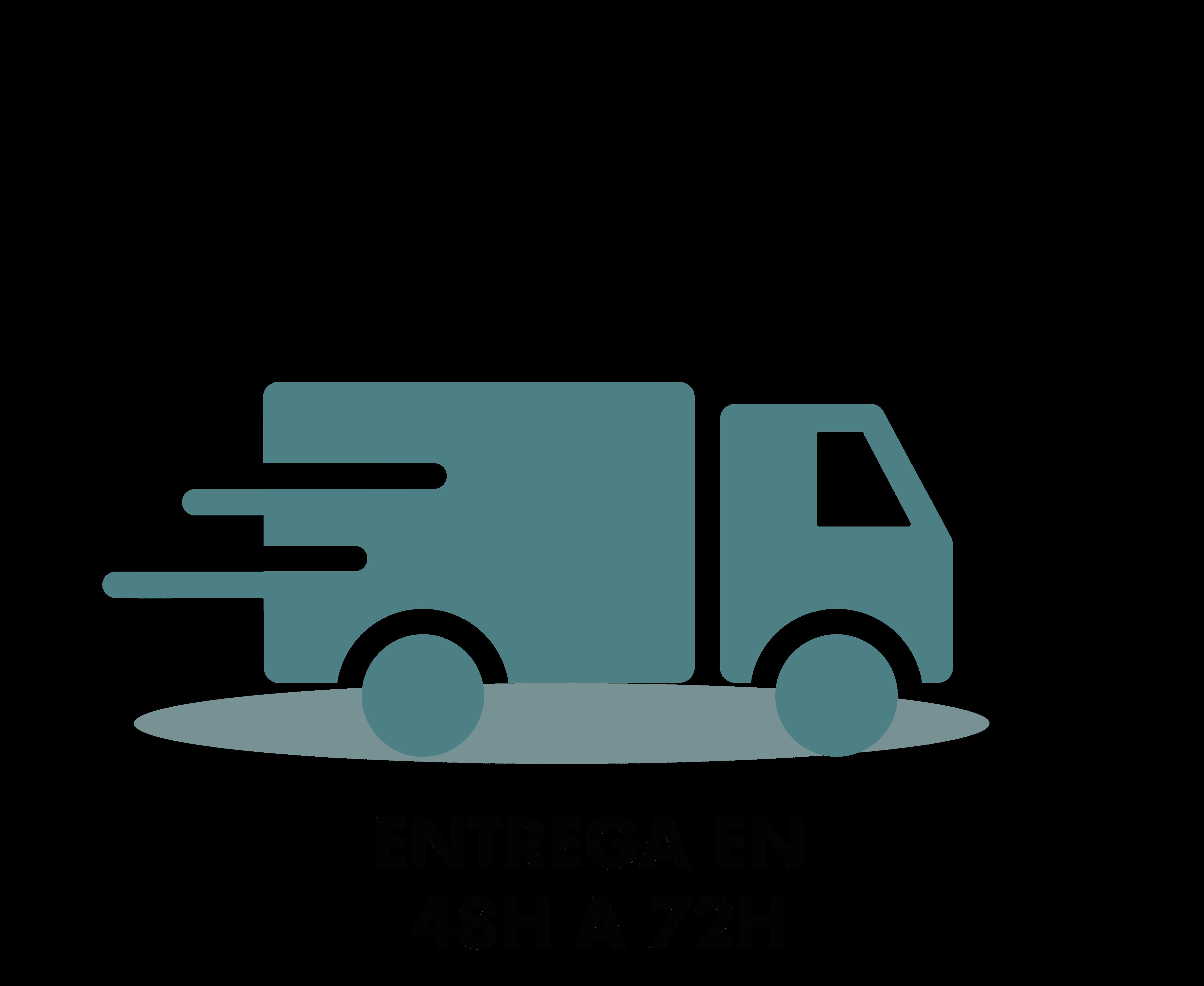 V2 logo livraison couleur ESS